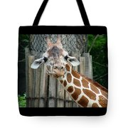 Giraffe-really-09025 Tote Bag