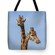 Giraffes 1 Tote Bag