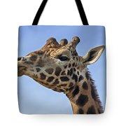 Giraffes 3 Tote Bag