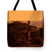 Giraffes At Sundown Tote Bag