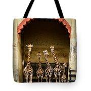 Giraffes Lineup Tote Bag
