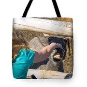 Girl Pets Donkey Tote Bag