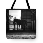 Girl With Horse Tote Bag