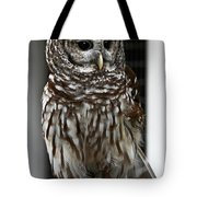 Give A Hoot Tote Bag by John Haldane