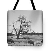 Give Me A Home Where The Buffalo Roam Bw Tote Bag