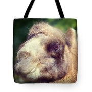 Give Me A Kiss Tote Bag