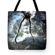 Giving Way To Winter Tote Bag