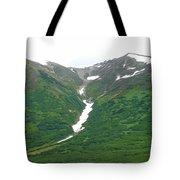 Glacier 14 Tote Bag