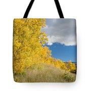 Glacier Fall Color Ridge Tote Bag