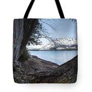Glacier Park View Tote Bag