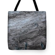 Glacier Travel Tote Bag