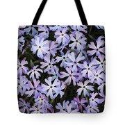 Glade Phlox Tote Bag