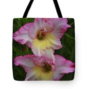 Gladiola Against Grasses Tote Bag