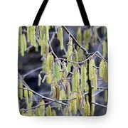 Glance In The Woods Tote Bag