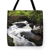 Gleason Falls Tote Bag