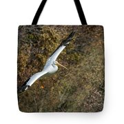 Gliding Pelican Tote Bag