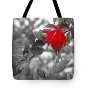 Glimpse Of Autumn Red Tote Bag