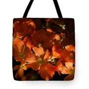 Globe-mallow Blooms  Tote Bag