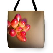 Globules Of Sedum 1 Tote Bag