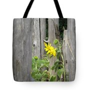 Gloria's Favorite Tote Bag