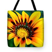 Glorious Day Yellow Flower By Diana Sainz Tote Bag
