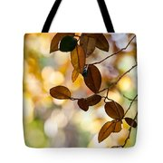 Glorious Foliage. Tree In Pamplemousse Garden 1. Mauritus Tote Bag