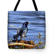 Glorious Grackle Tote Bag