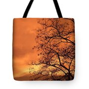 Glorious Silhouettes 1 Tote Bag