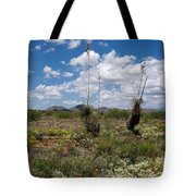 Glorious Spring In The Desert Tote Bag