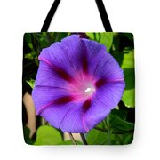 Glory In The Morning Tote Bag