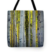 Glowing Aspens Tote Bag