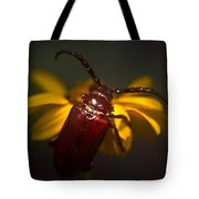 Glowing Beetle Tote Bag
