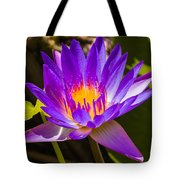 Glowing From Within Tote Bag