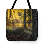 Glowing Maples Square Tote Bag
