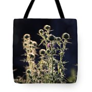 Glowing Thistle - 2 Tote Bag