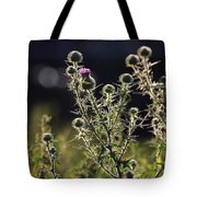 Glowing Thistle - 1 Tote Bag