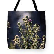 Glowing Thistle - 3 Tote Bag