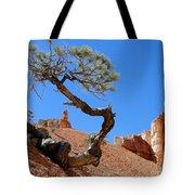 Gnarled Pine In Bryce Canyon Utah Tote Bag