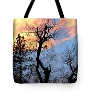 Gnarled Tree Silhouette Tote Bag