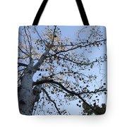 Go Climb A Tree Tote Bag