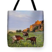 Goats In Fes Tote Bag