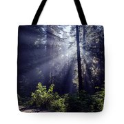 God Rays Through The Fog Tote Bag