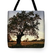 Goddess Tree 2 Tote Bag