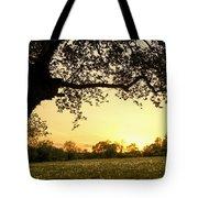 Goddess Tree 3 Tote Bag