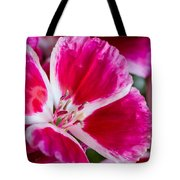 Godetia Pink And White Flower Tote Bag