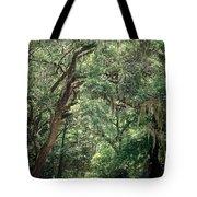 God's Canopy Tote Bag