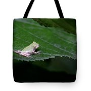 God's Tiny Tree Frog Tote Bag