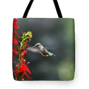 Going In For Seconds Tote Bag