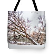 Going Softly Into Winter Tote Bag
