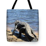Going To Cool Off Tote Bag